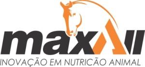 logo maxall